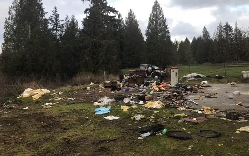 Debris Removal Roy